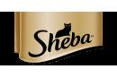 UA SHEBA®
